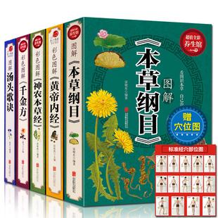 全5册彩图李时珍养生中医四大名著
